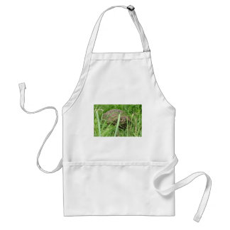 At Ease In Your Own Shell Standard Apron