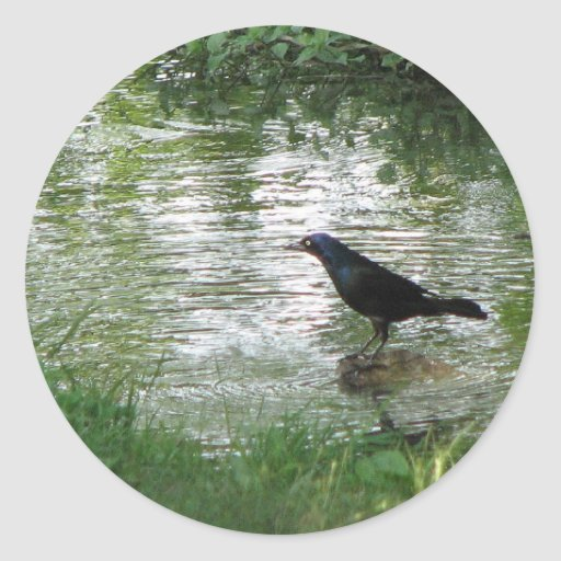 At the Creek Round Stickers