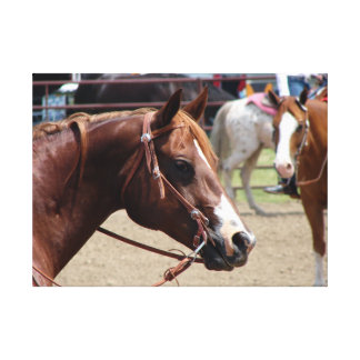 At The Horse Show Stretched Canvas Print