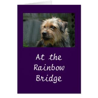 At the Rainbow Bridge Greeting Card