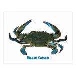 Atlantic Blue Crab Logo