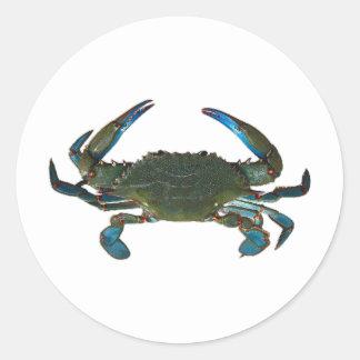 Atlantic Blue Crab Logo Classic Round Sticker
