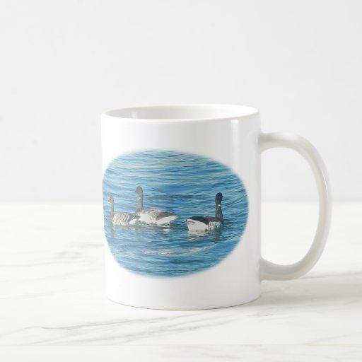 Atlantic Brant Geese Boss Birthday Mugs