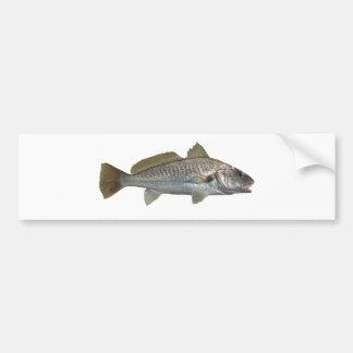 Atlantic Croaker Bumper Sticker