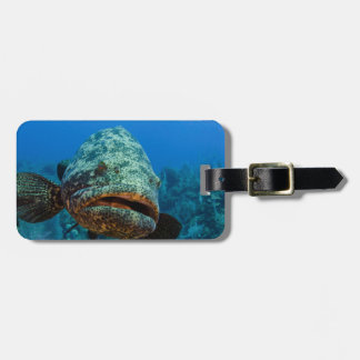 Atlantic Goliath Grouper Luggage Tag