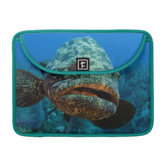 Atlantic Goliath Grouper Sleeve For MacBook Pro