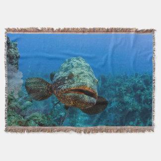 Atlantic Goliath Grouper Throw Blanket