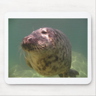Atlantic Grey Seal Products Mouse Mat
