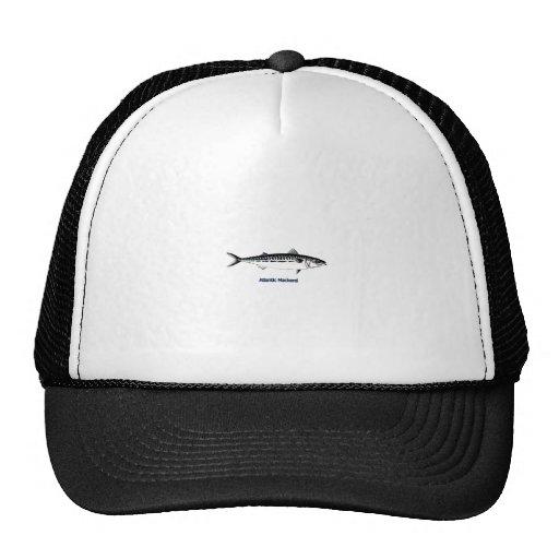 Atlantic Mackerel Logo Hats