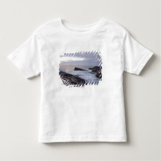 Atlantic Ocean at Sunrise in Maine Toddler T-Shirt