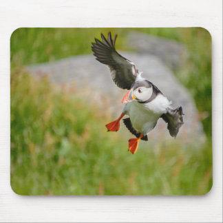 Atlantic Puffin bird flying mousepad