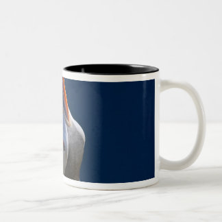 Atlantic Puffin (Fratercula arctica) 3 Two-Tone Coffee Mug