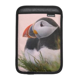 Atlantic Puffin (Fratercula arctica) 6 iPad Mini Sleeve
