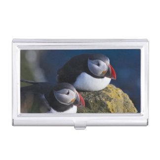 Atlantic Puffin (Fratercula arctica) 7 Business Card Holder
