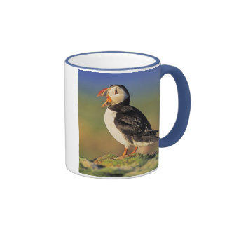 Atlantic Puffin (Fratercula Arctica) Mug