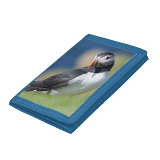 Atlantic Puffin (Fratercula Arctica) On Cliff 2 Trifold Wallet
