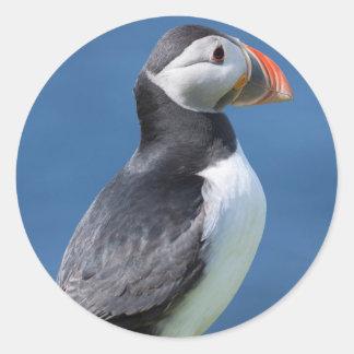 Atlantic Puffin (Fratercula Arctica) On Cliff Classic Round Sticker