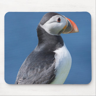 Atlantic Puffin (Fratercula Arctica) On Cliff Mouse Mat