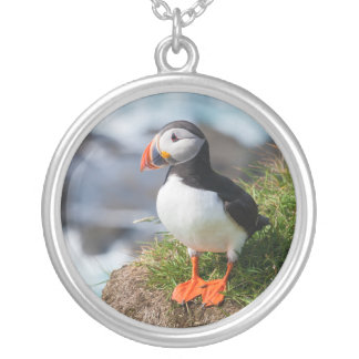 Atlantic Puffin Fratercula Arctica Silver Plated Necklace