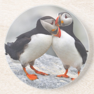 Atlantic Puffin Love Coaster
