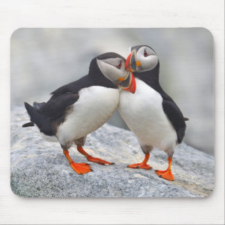 Atlantic Puffin Love Mouse Mat