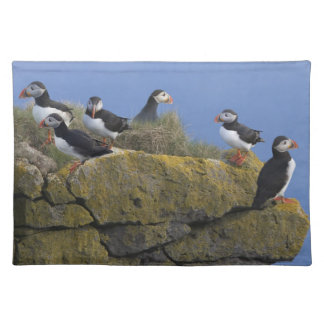 Atlantic Puffins (Fratercula arctica) on cliff Placemat