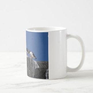Atlantic Puffins Coffee Mugs