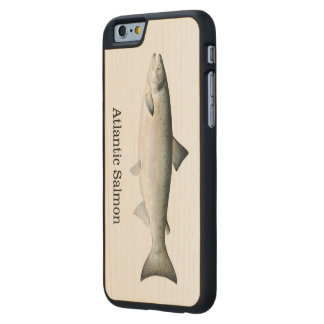Atlantic Salmon Fish Carved Maple iPhone 6 Case