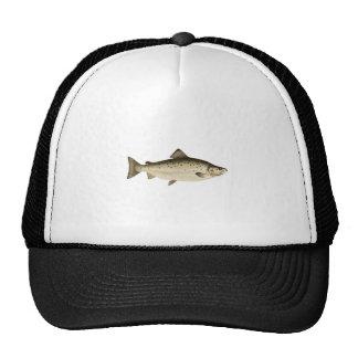Atlantic Salmon - Ouananiche - Sebago Salmon Cap
