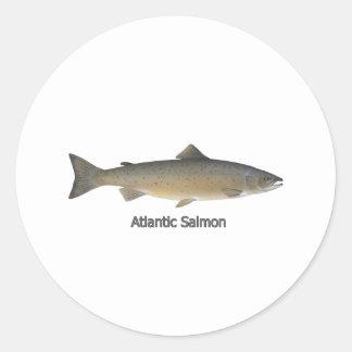 Atlantic Salmon (titled) Classic Round Sticker