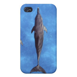 Atlantic spotted dolphins. Bimini, Bahamas. 3 iPhone 4 Case
