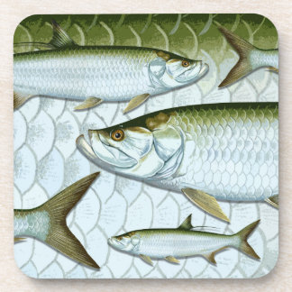 Atlantic Tarpon Coasters
