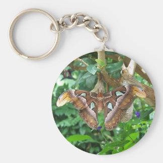 Atlas Moth Keychain