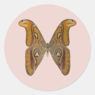 Atlas Moth Round Sticker