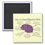 Atlas of a Dental Hygienist's Brain