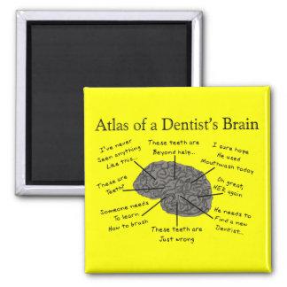 Atlas of a Dentist's Brain Square Magnet