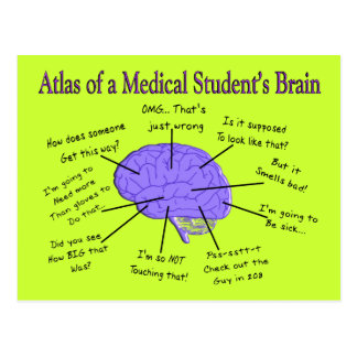 Atlas of a Medical Student s Brain 2 Post Card