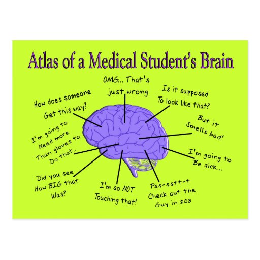 Atlas of a Medical Student's Brain #2 Post Card