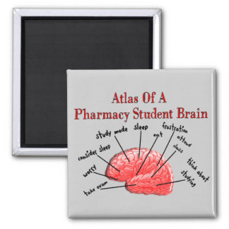 Atlas of a Pharmacy Student Brain Square Magnet
