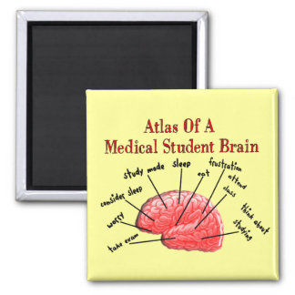 Atlas of Medical Student Brain Square Magnet