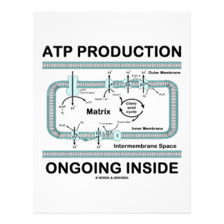 ATP Production Ongoing Inside Personalized Flyer