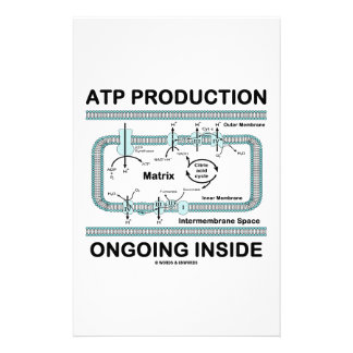 ATP Production Ongoing Inside Stationery Paper