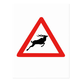 Attention Kudus, Traffic Sign, South Africa Postcard