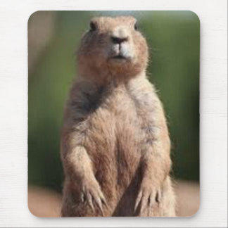 Attention! Prairie Dog Mouse Pad