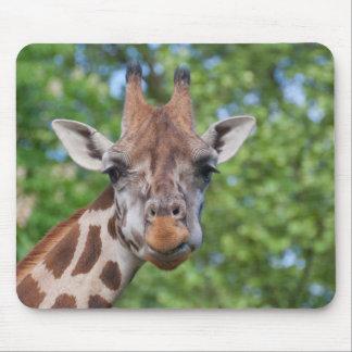 Attentive Giraffe Mouse Pad