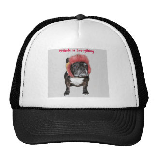 attitude is everything funny bulldog with hat