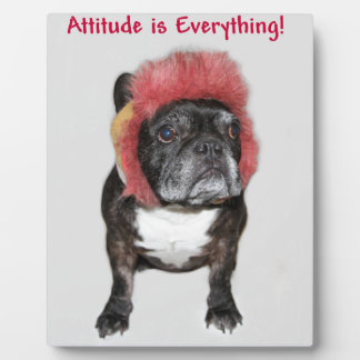 attitude is everything funny bulldog with hat display plaque