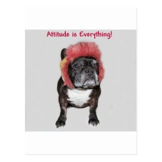 attitude is everything funny bulldog with hat postcard