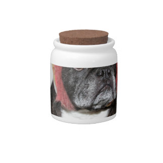 attitude is everything funny bulldog with hat candy jar