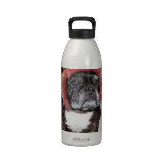 attitude is everything funny bulldog with hat water bottles